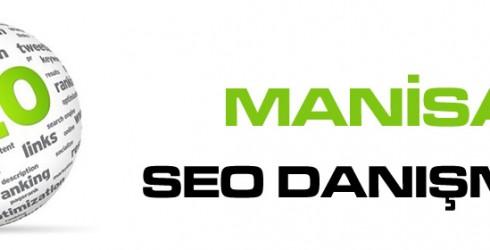Manisa Seo Danışmanı