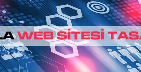 Muğla Web Sitesi Tasarımı