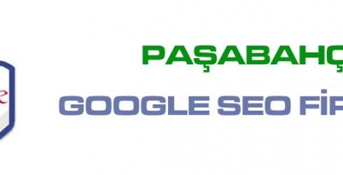 Paşabahçe Google Seo Firması