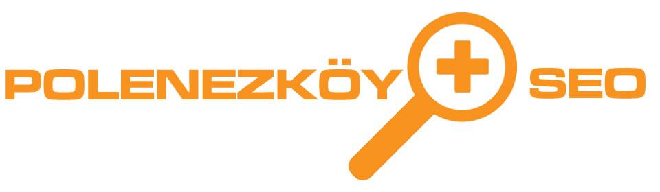 https://www.icebluetasarim.com/wp-content/uploads/2014/12/polenezkoy-seo.jpg