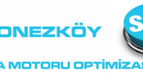 Polonezköy Arama Motoru Optimizasyonu