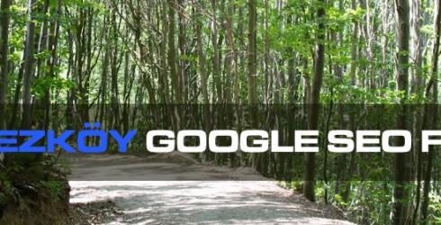 Polonezköy Google Seo Firması