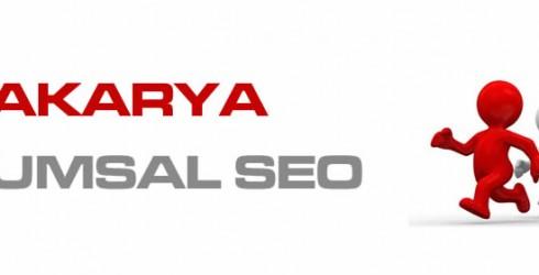 Sakarya Kurumsal Seo