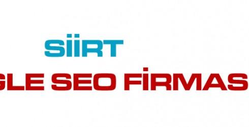 Siirt Google Seo Firması