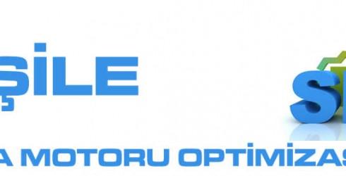 Şile Arama Motoru Optimizasyonu