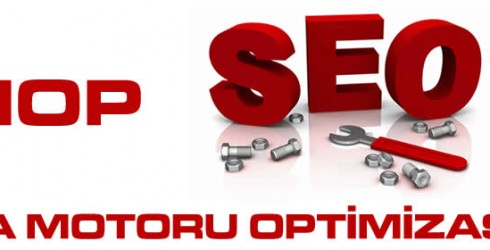 Sinop Arama Motoru Optimizasyonu