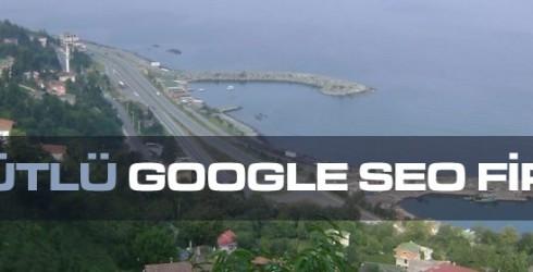 Söğütlü Google Seo Firması
