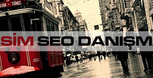 Taksim Seo Danışmanı