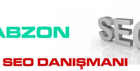 Trabzon Seo Danışmanı