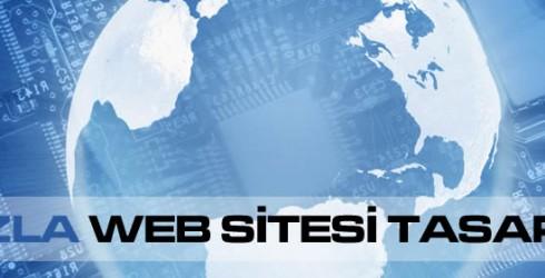 Tuzla Web Sitesi Tasarımı
