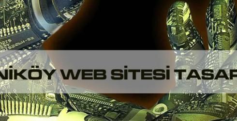 Yeniköy Web Sitesi Tasarımı
