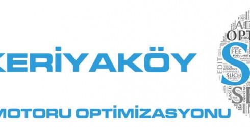 Zekeriyaköy Arama Motoru Optimizasyonu