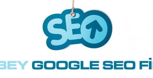 Ziverbey Google Seo Firması